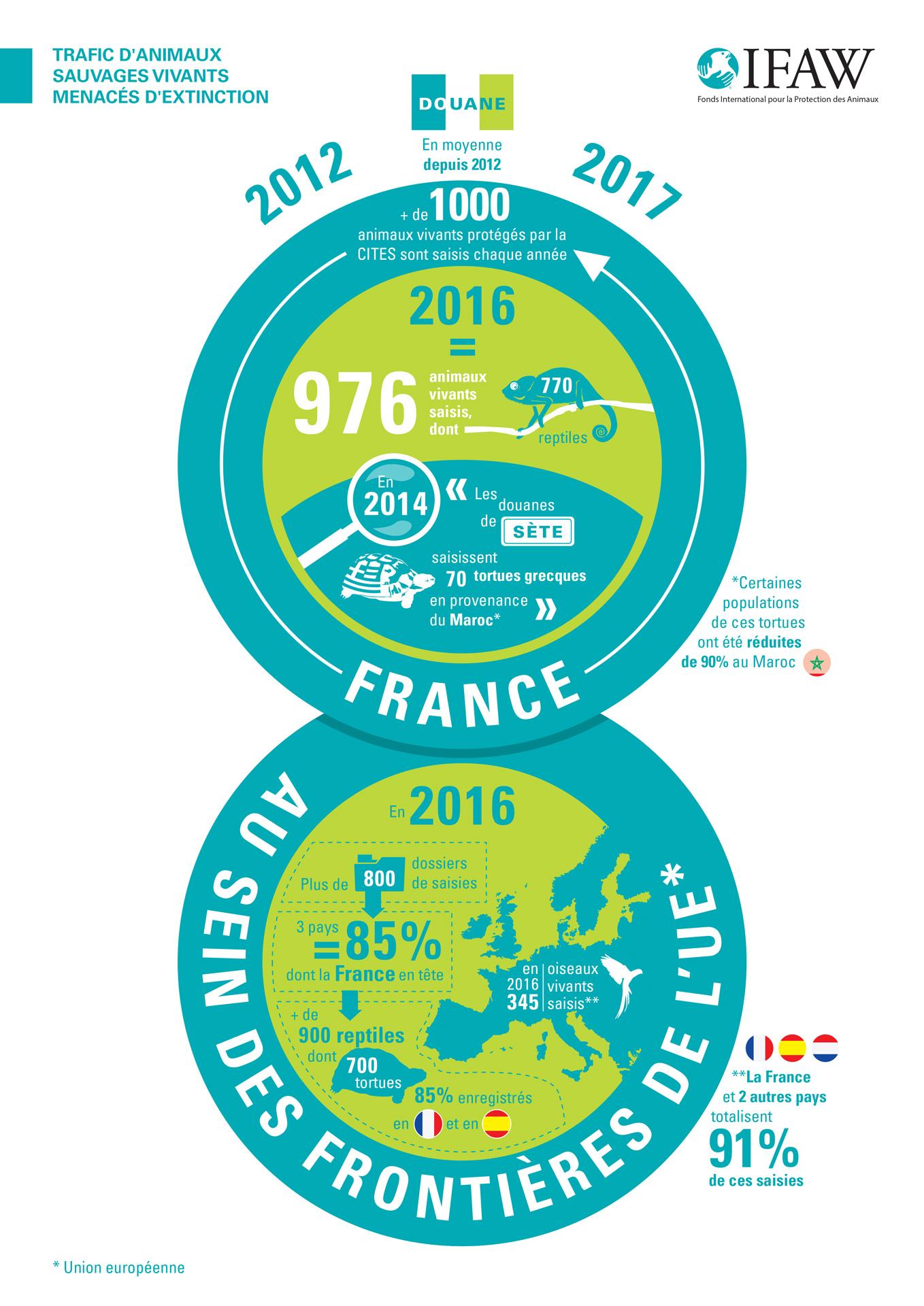 infographie ifaw sur le trafic d'animaux sauvages vivants